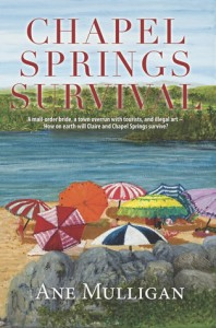 Chapel Springs Survival - Ane Mulligan
