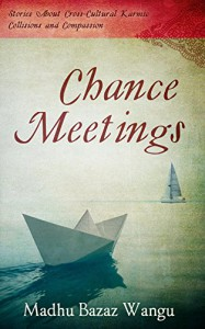 Chance Meetings: Stories About Cross-Cultural Karmic Collisions and Compassion - Madhu Bazaz Wangu