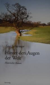 Hinter den Augen der Welt: Historischer Roman - Tess Schirmer