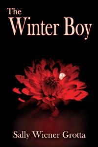 The Winter Boy - Sally Wiener Grotta