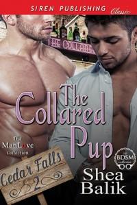 The Collared Pup - Shea Balik