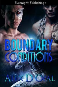 Boundary Conditions - Alex D Opal