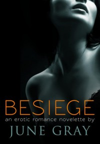 Besiege (DISARM,  #2) - June Gray