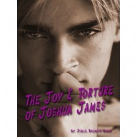 The Joy & Torture of Joshua James - Julie Rieman Duck