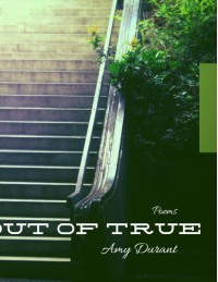 Out of True - Amy Durant