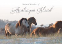 Natural Wonders of Assateague Island - Mark Hendricks