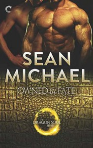 Owned By Fate - Sean Michael