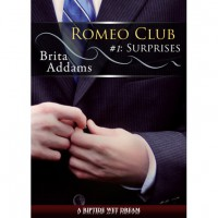 Surprises - Brita Addams