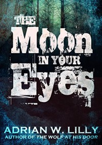 The Moon in Your Eyes - Adrian Lilly