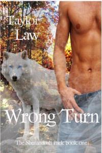 Wrong Turn  - Taylor Law