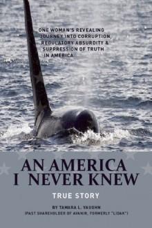 An America I Never Knew: A True Story - Tamara L. Vaughn, David H. Katz, David H. Katz M.D.
