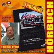 Der Nationale Widerstand - Rückschau, Analyse, Aussichten - Thomas Brehl, Martin Theins