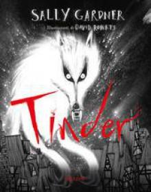 Tinder - Sally Gardner,David Roberts