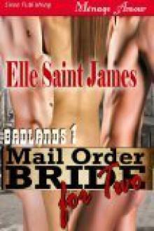 Mail Order Bride for Two (Badlands, #1) - Elle Saint James