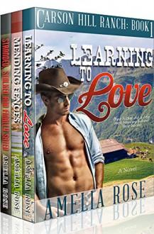 Contemporary Cowboy Romance 3 Book Box Set - Amelia Rose