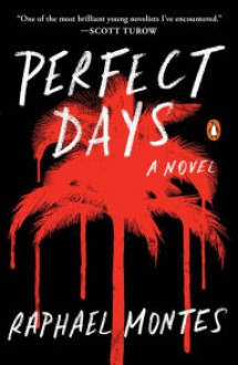 Perfect Days: A Novel - Raphael Montes