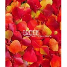 Brenin - M.B. Forester-Smythe
