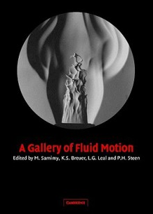 A Gallery of Fluid Motion - M. Samimy, K.S. Breuer