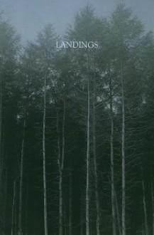 Landings - Richard Skelton