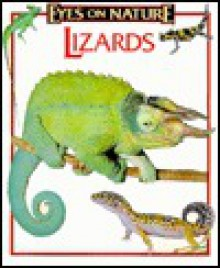 Lizards - Robert Matero
