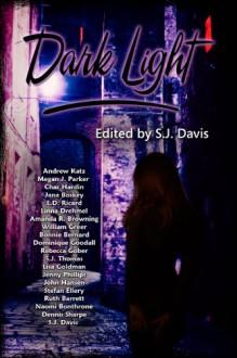 Dark Light Anthology - S.J. Davis, Bonnie Bernard, Stefan Ellery, Ruth Barrett