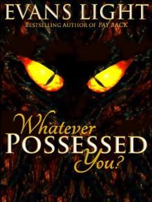 Whatever Possessed You? - Evans Light