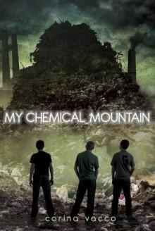 My Chemical Mountain - Corina Vacco