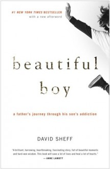 Beautiful Boy: A Father's Journey Through His Son's Addiction - David Sheff