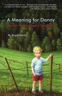 A Meaning for Danny - Brigid Marlin