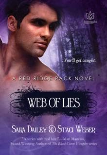 Web of Lies - Sara Dailey, Staci Weber
