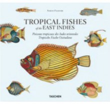 Tropical Fishes of the East Indies - Theodore W. Pietsch, Petra Lamers-Schutze