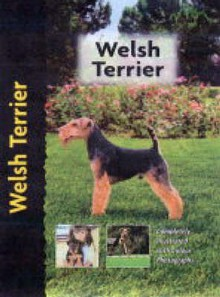 Welsh Terrier - Hugh Owen