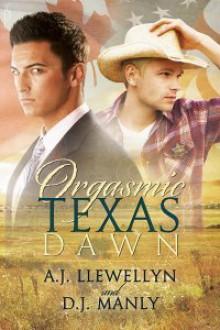 Orgasmic Texas Dawn - A.J. Llewellyn, D.J. Manly