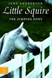 Little Squire: The Jumping Pony - Judy Andrekson, David Parkins