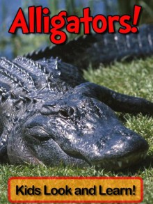 Alligators! Learn About Alligators and Enjoy Colorful Pictures - Look and Learn! (50+ Photos of Alligators) - Becky Wolff