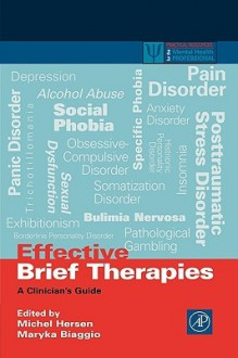 Effective Brief Therapies: A Clinician's Guide - Michel Hersen, Maryka Biaggio