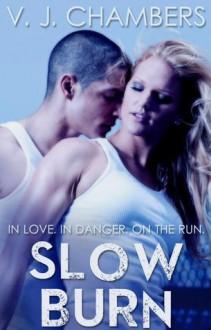 Slow Burn (Assassins, #1) - V.J. Chambers