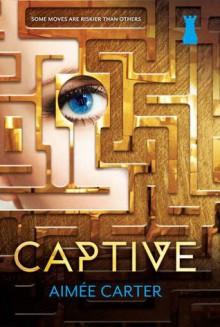 Captive - Aimee Carter