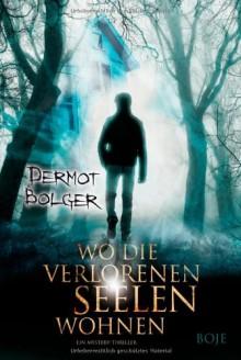 Wo die verlorenen Seelen wohnen - Dermot Bolger,Bernadette Ott