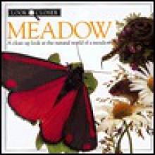 Meadow - Barbara Taylor