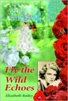 Fly the Wild Echoes - Elizabeth Bailey