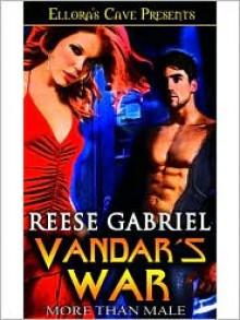 Vandar's War - Reese Gabriel