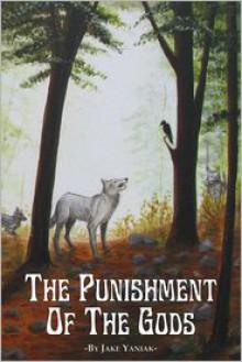 The Punishment of the Gods - Jake Yaniak