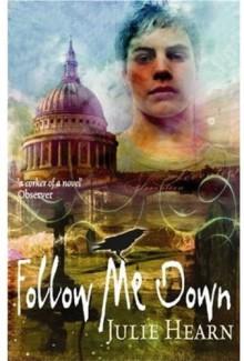 Follow Me Down - Julie Hearn