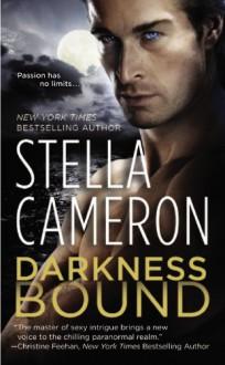 Darkness Bound (Chimney Rock) - Stella Cameron