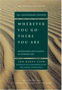 Wherever You Go, There You Are (Audio) - Jon Kabat-Zinn