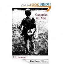 Canopies at Dusk - Tim Johnson