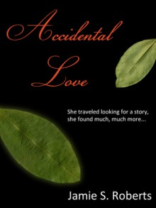 Accidental Love (High on Love, #1) - Jamie S. Roberts