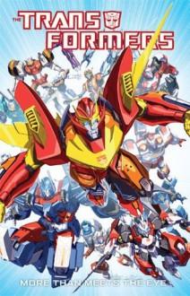 Transformers: More Than Meets the Eye Vol. 1: More Than Meets the Eye v. 1 - Nick Roche, James Roberts, John Barber, Don Figueroa