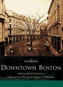 Downtown Boston - Anthony Mitchell Sammarco